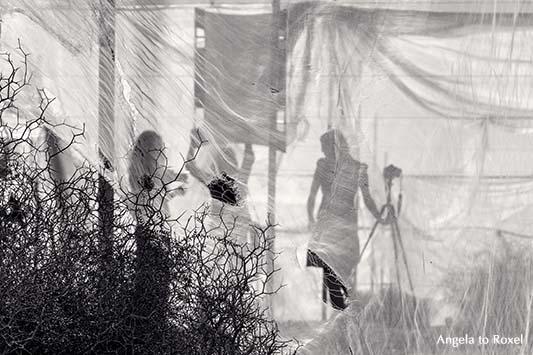 Silhouetten von drei Fotografinnen während eines Shootings hinter einem Schleier in einem Tomatenzelt in Andalusien, Kamera, Stativ und Reflektor