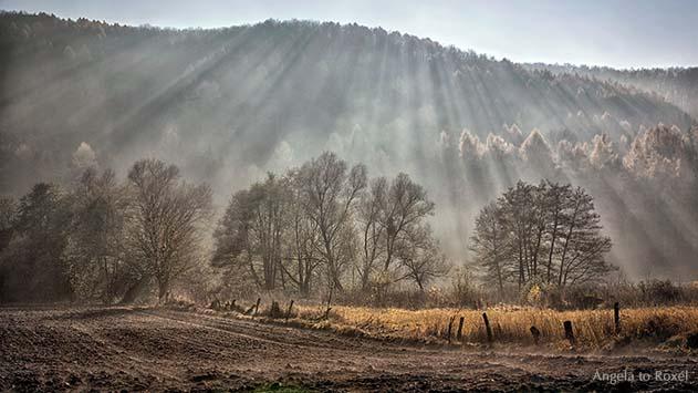 Landschaftsbild: Wenn der Herbst kommt, Strahlen der Herbstsonne im Weserbergland, Gegenlichtaufnahme | Ihr Kontakt: Angela to Roxel