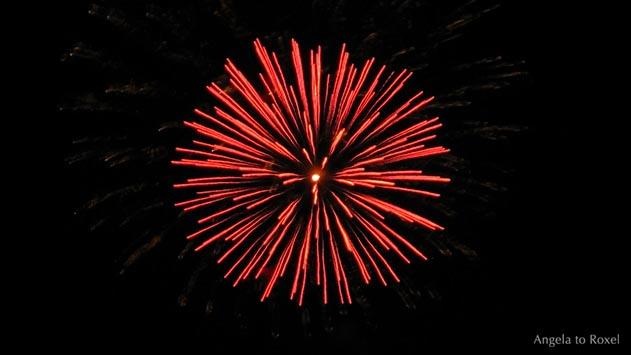 Fotografien kaufen: Carpe diem, Feuerwerk am nächtlichen Himmel, rote Kugel vor schwarzem Hintergrund, rote Päonie | Ihr Kontakt: Angela to Roxel