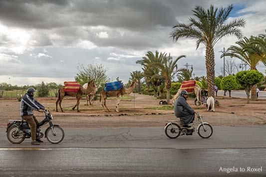 Fotografie: Straßenszene in Marrakesch, knatternde Mopeds und am Straßenrand parkende Kamele in Marrakesch, Marokko | Angela to Roxel