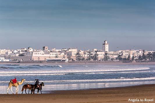 Die Karawane zieht ... in die weiße Stadt Essaouira