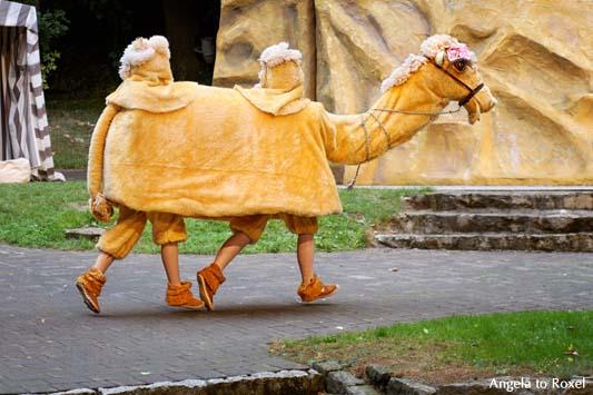 """Fotografie: Meilenweit: ein Kamel, vier Beine auf der Bühne, Theaterstück """"Sindbad, der kleine Seefahrer"""" Freilichtbühne Bökendorf 2013 - A. to Roxel"""