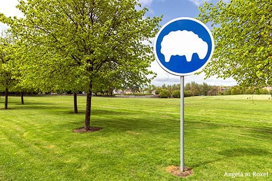 Sheep only, Schild, weidende Schafe, auf einer frisch gemähten Wiese, Parkanlage in Dublin, Irland | Ihr Kontakt: Angela to Roxel