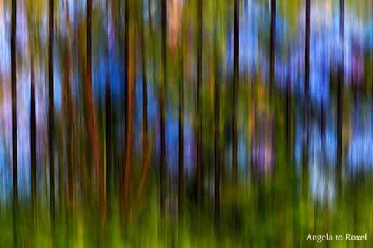 Blaue Hortensien hinter einem Gartenzaun, abstrakt, Wischtechnik, Worpswede