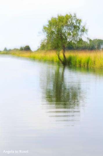 Kunstfotografie: Worpswede an der Hamme, Impression mit Baum, Teufelsmoor, Langzeitbelichtung in Wischtechnik | Ihr Kontakt: Angela to Roxel