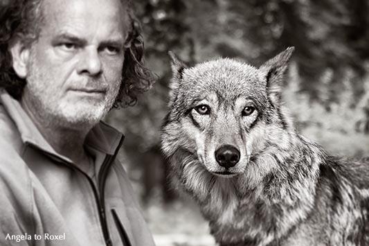 Foto-Shooting mit Matthias Vogelsang und einer Wölfin im Gehege, monochrom - Wisentgehege Springe