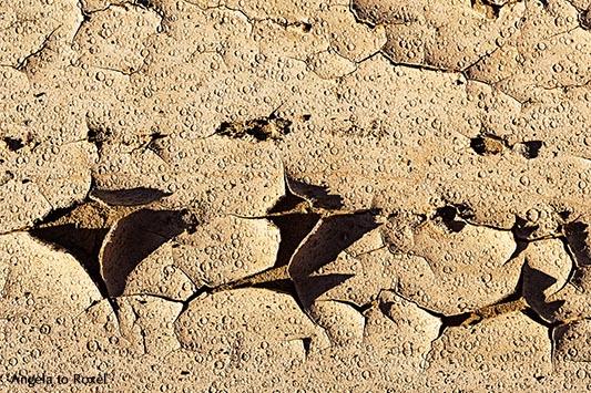 Spuren von Regentropfen und Trockenrisse im Boden nach der Überschwemmung in Andalusien - Almeria, Oktober 2013