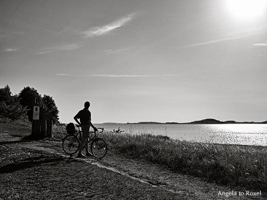 Biker on Mönchsgut, looking back, black and white, backlight, Rügen