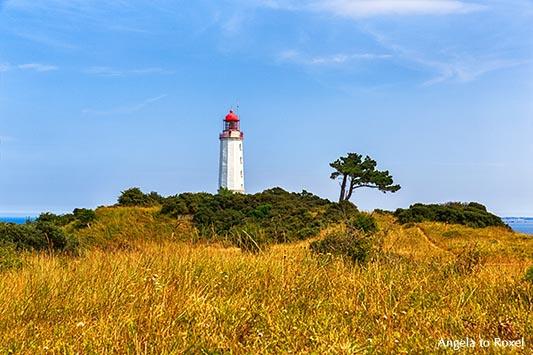 Fotografie: Leuchtturm, Leuchtfeuer Dornbusch auf dem Schluckswiek, dem so genannten Hochland der Insel Hiddensee, Mecklenburg-Vorpommern - Bildlizenz