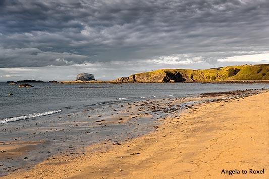 Landschaftsbilder kaufen: Bucht von North Berwick mit dem Vogelfelsen Bass Rock im Firth of Forth,, Abendlicht am Strand, East Lothian, Schottland