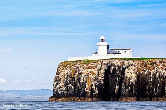 Weißer Leuchtturm auf den Farne Islands, Inner Farne Lighthouse, auch High Light genannt, Northumberland - England 2015