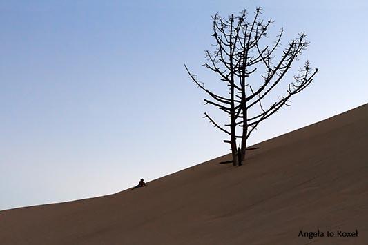 Landschaftsbilder kaufen: Trockener Baum auf der Wanderdüne Dune du Pilat am Abend, Silhouette, Arcachon, Frankreich | Ihr Kontakt: Angela to Roxel
