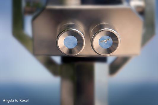 Kunstfotografie kaufen: Möwe in einem Fernrohr, Binocular, Aussicht genießen, Composing, Nationalpark Jasmund, Rügen | Ihr Kontakt: Angela to Roxel
