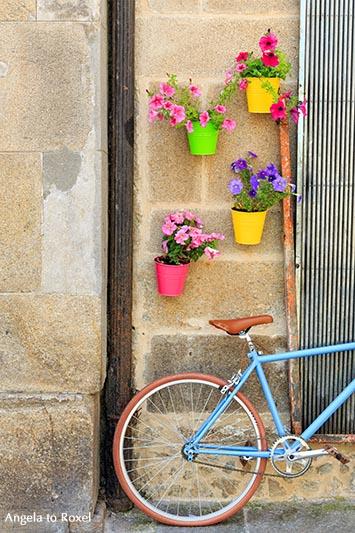Kunstfotografie kaufen: Fahrrad, hellblaues Rennrad an einer Hauswand mit bunten Blumentöpfen, Santiago de Compostella | Ihr Kontakt - Angela to Roxel