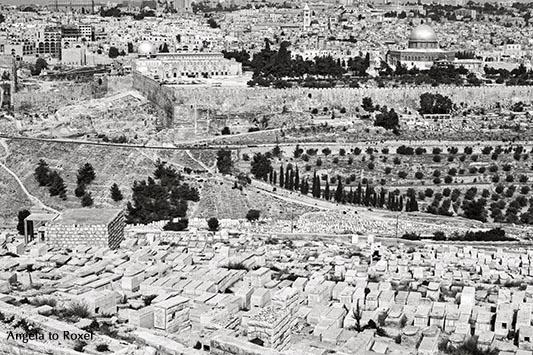 Aussicht vom Ölberg, Blick über eine jüdischen Friedhof und das Kidrontal auf den Felsendom und den Tempelberg, analog, schwarzweiß - Israel 1980