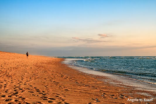 Mann geht am Strand bei Sonnenuntergang, Silberküste am Abend, Côte d'Argent, Soorts-Hossegor, Nouvelle-Aquitaine - Frankreich 2012