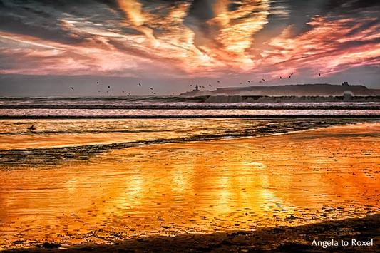 Fotografie: Abendstimmung an der Plage Tagharte mit Blick auf die Insel Mogador, Iles Purpuraires, Küste von Essaouira, Marokko 2014 - Bildlizenz