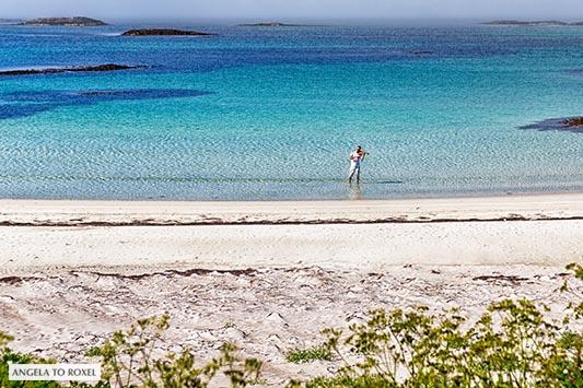 Geigenspieler an einem einsamen Strand auf den Vesterålen, steht im türkisfarbenen Wasser des Nordmeeres, Andenes auf der Insel Andøya, Norwegen 2014