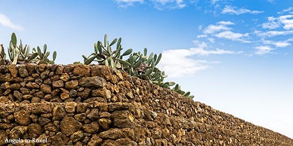 Pyramidenförmige Terrassenbauten aus Lavasteinen, Ethnographischer Park Pirámides de Güímar, Güímar, Santa Cruz de Tenerife, Teneriffa, Spanien 2015