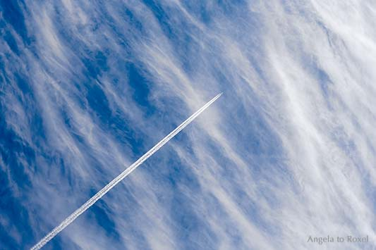Fotografie: Bis hierhin und dann weiter ... - Kondensstreifen, Flugzeug vor Schleierwolken, Cirrostratus und blauer Himmel, Niedersachsen - Bildlizenz