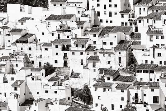 Architektur Bilder: Weißes Dorf in der Provinz Málaga, Route der weißen Dörfer zwischen Málaga und Cádiz, schwarzweiß, Andalusien | A. to Roxel
