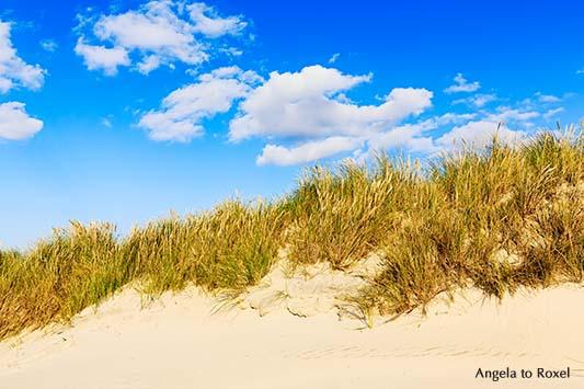 Fotografie: Cumuluswolken über Dünen an der Nordsee, Dünen am Strand von Kampen auf Sylt, Schleswig-Holstein - Landschaftsbild, Bildlizenz, Stockfoto