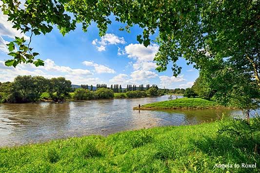 Blick auf die Weser im Sommer, Weserradweg R1 in Höxter, Nähe Schloss Corvey, Weserbergland - Ihr Kontakt: Angela to Roxel