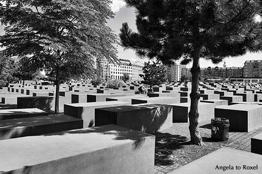 Radfahrer im Stelenfeld, Denkmal für die ermordeten Juden Europas, Holocaust-Mahnmal in Berlin-Mitte, schwarzweiß, - Ihr Kontakt: Angela to Roxel