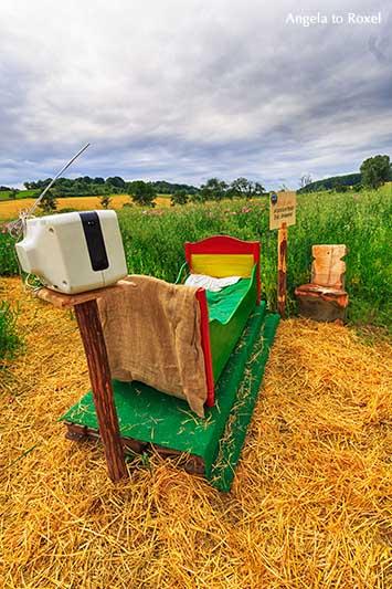 Buntes Bett aus Holz auf Stroh, Schlafmohnfeld in Grandenborn, Fernseher mit Antenne, Wanderweg, Mohnblüte im Geo-Naturpark Frau-Holle-Land | A. to Roxel