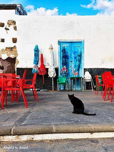 Schwarze Katze sitzt am frühen Morgen auf einer menschenleeren Terrasse in Arrieta, Lanzarote, Kanarische Inseln | Fotografien kaufen - Angela to Roxel